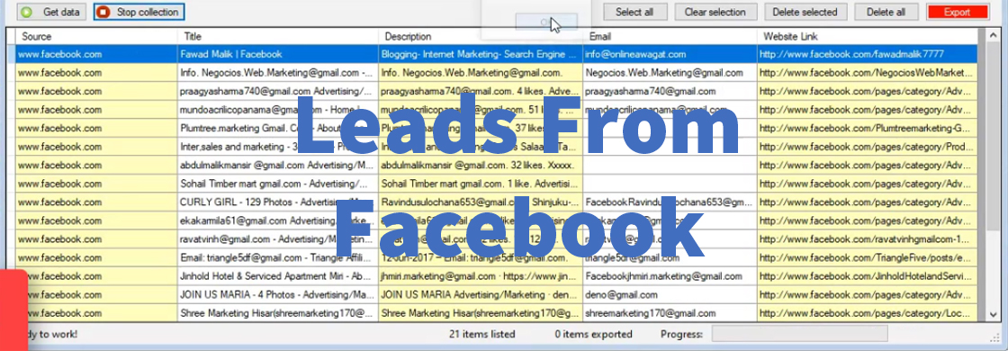 Leads From Facebook